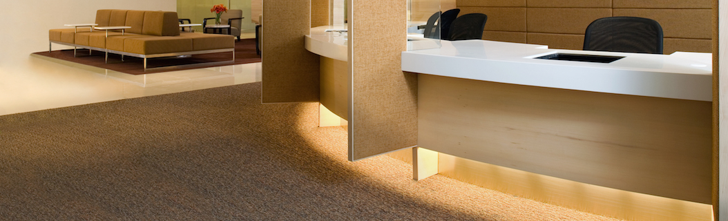 Hire a Commercial Cleaning Services Company to Deep Clean Your Carpets. Improve the Air Quality in Your Office Today!
